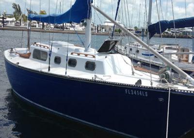 Courage-dock-500x500